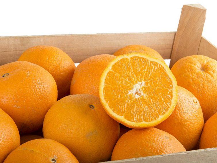 Arance di Sicilia – Come Poter Ricevere Prodotti di Qualità a Casa Propria.